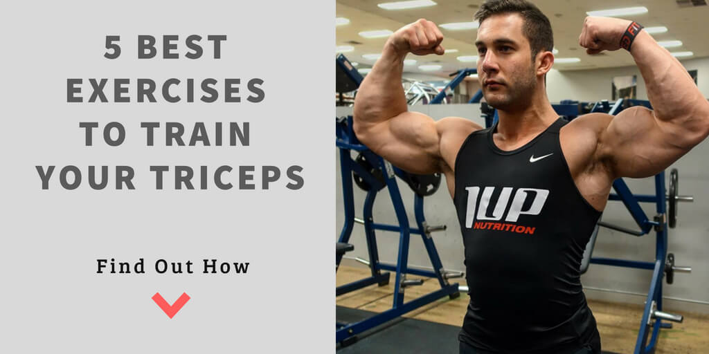 5 Best Exercises To Train Your Triceps Ryan Spiteri